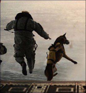 militarydefenseattorney13.56608